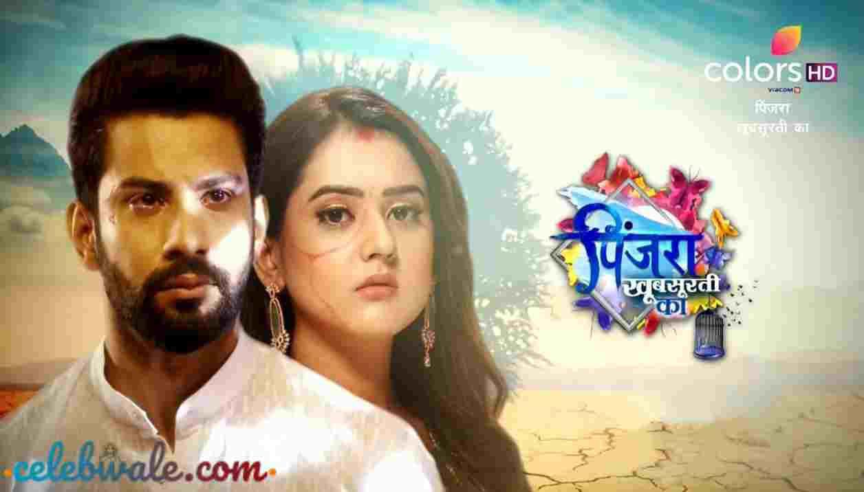 Pinjara Khubsurti Ka tv serial (Colors TV)