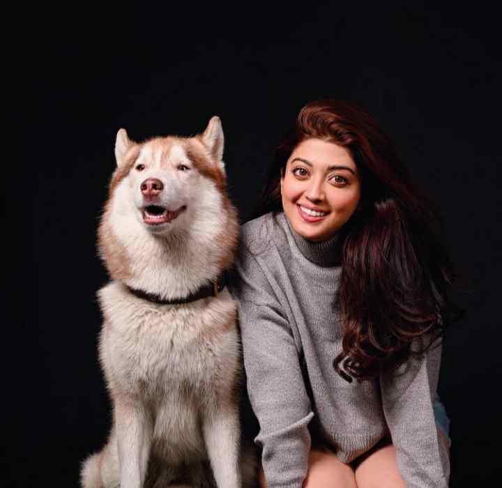 Pranitha Subhash animal lover